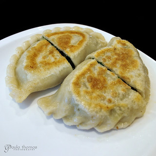 Pan Fried Leek Dumplings