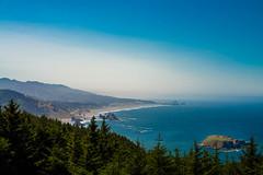 Coast of Fog