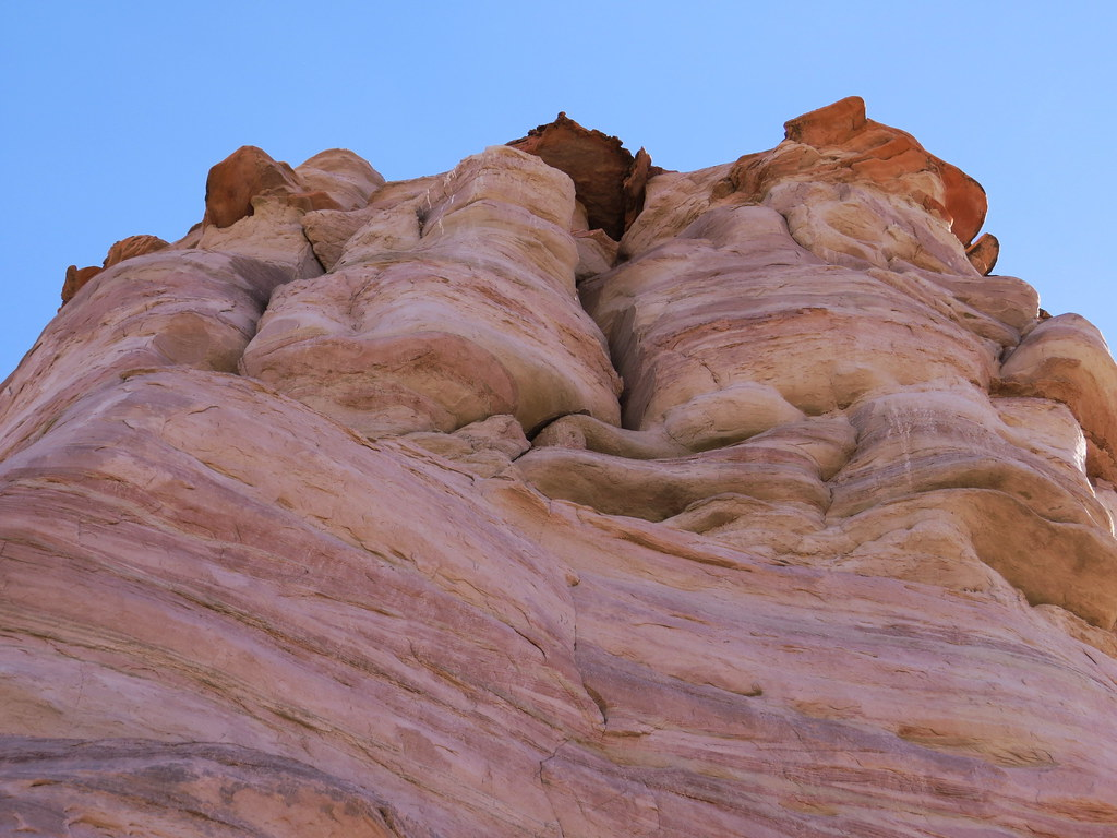 Tonalea's Elephants Feet Sandstone, Arizona