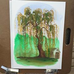 RIP Willow Tree