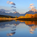 Fall Aspens in Sunlight at Oxbow Bend, Grand Teton National Park by Bryan Carnathan