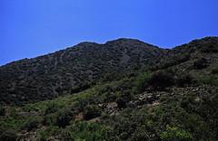 251Zypern Troodos Papoutsa