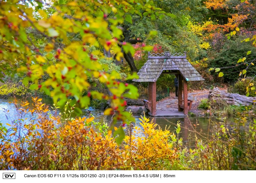 ►►► Autumn of Central Park 紐約中央公園秋景 ● DV ◄◄◄