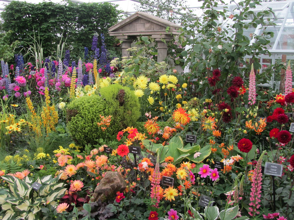 Floral Displays, Chelsea.