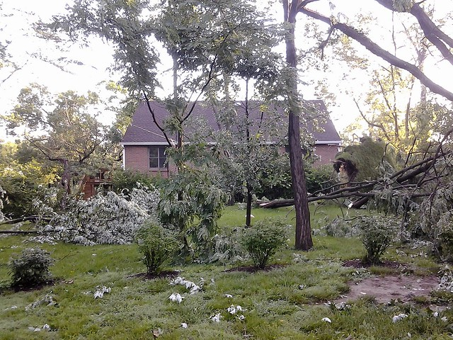 Storm damage and