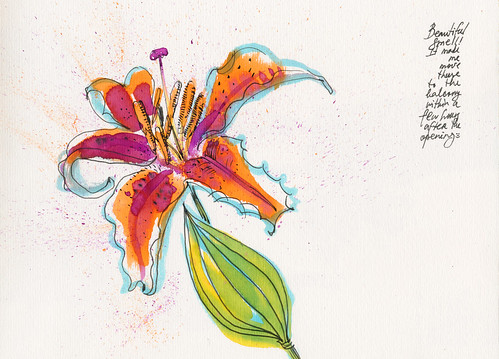 May 2014:Lillies