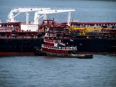 26 Shipping Staten Island NY 0104
