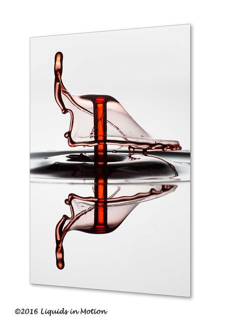 Duck Tail #6060   ©2014 - LiquidsinMotion.us.com