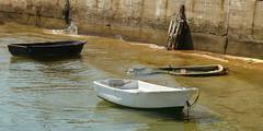 Muelle de las Canoas
