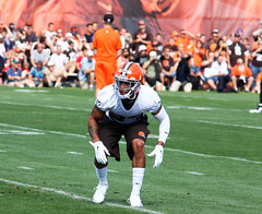 Cleveland Browns Training Camp 2014