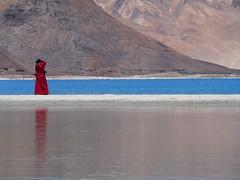 Monk-Pangong Tso-Ladakh-Jammu Kashmir-India