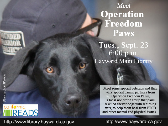 Meet Operation Freedom Paws