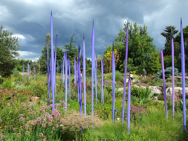 Purple reeds by Dale Chihuly at Denver Botanic Gardens
