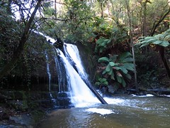 2014-08-10 Lilydale Falls 036 - Lower falls