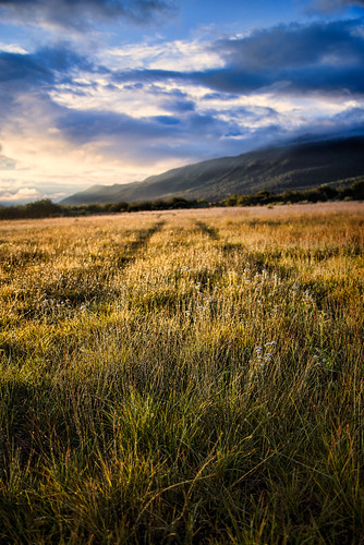 sky field grass clouds sunrise colorado lakes twin trail co leadville rockymountains lt100