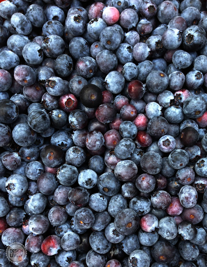BlueberryPie1