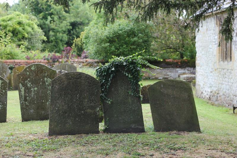 tombstones & ivy