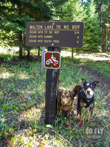 Walton Lake-0079