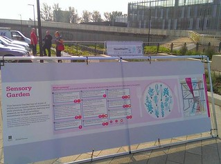 Sensory Garden information at Birley Fields