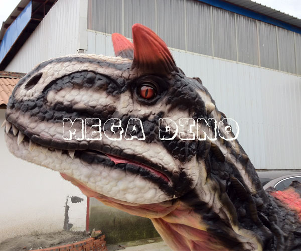 Life Size Carnotaurus Head Model for Sale