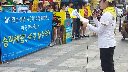20140824_용산화상경마장 동물자유연대