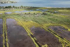 Above the marsh at Seatuck National Wildlife Refuge, one of the three units targeted for salt marsh restoration that will help protect nearby communities in Suffolk and Nassau Counties during future storm events.
