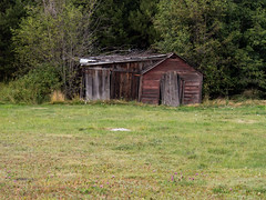 Tumbledown shack