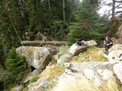 Montée de Bocca Pulischellu : arrivée au col