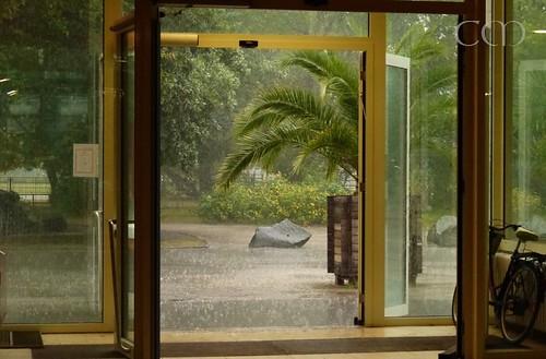 Rain, rain, rain!!!