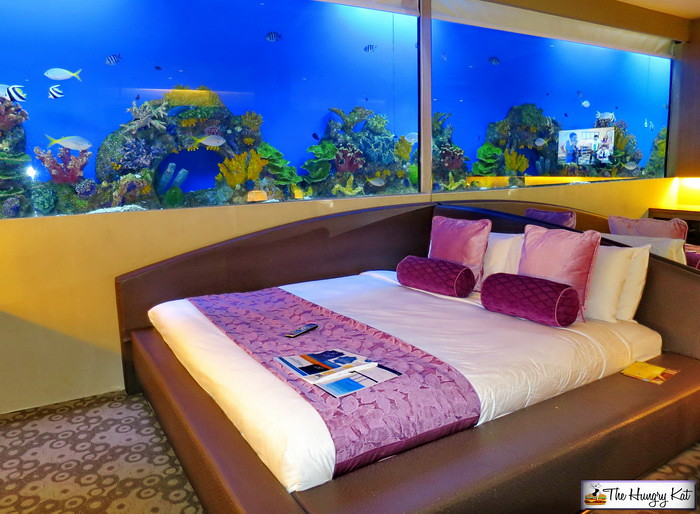 The Hungry Kat Sleeping With The Fishes At Hotel H2o