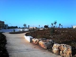Piante e alberi nella vecchia area del rudere dell'ospedale (3)