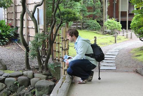 Mijmeren in Tokyo, garden of Denbou-in