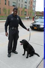 APD Officer A. Jones and partner Midnight