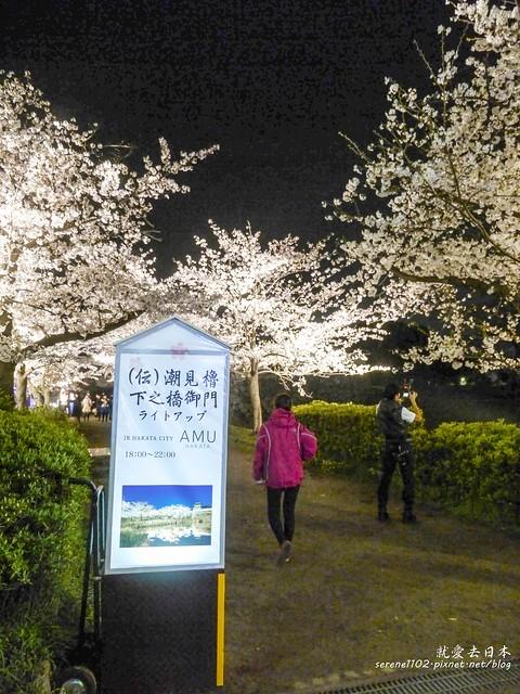 20140327山陽D2熊本-1130394