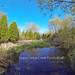 Arboretum Pond #EcoU