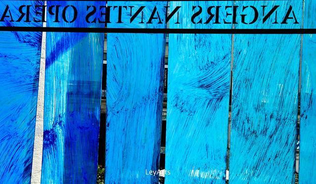 Graslin bleu
