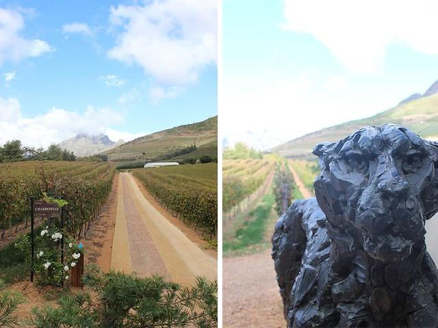 etela afrikan viinitilat