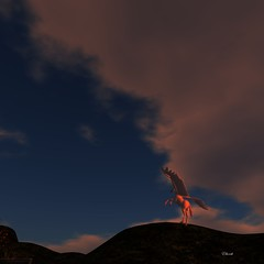 Next picture: Pegasus at Sunset, by Elberteth