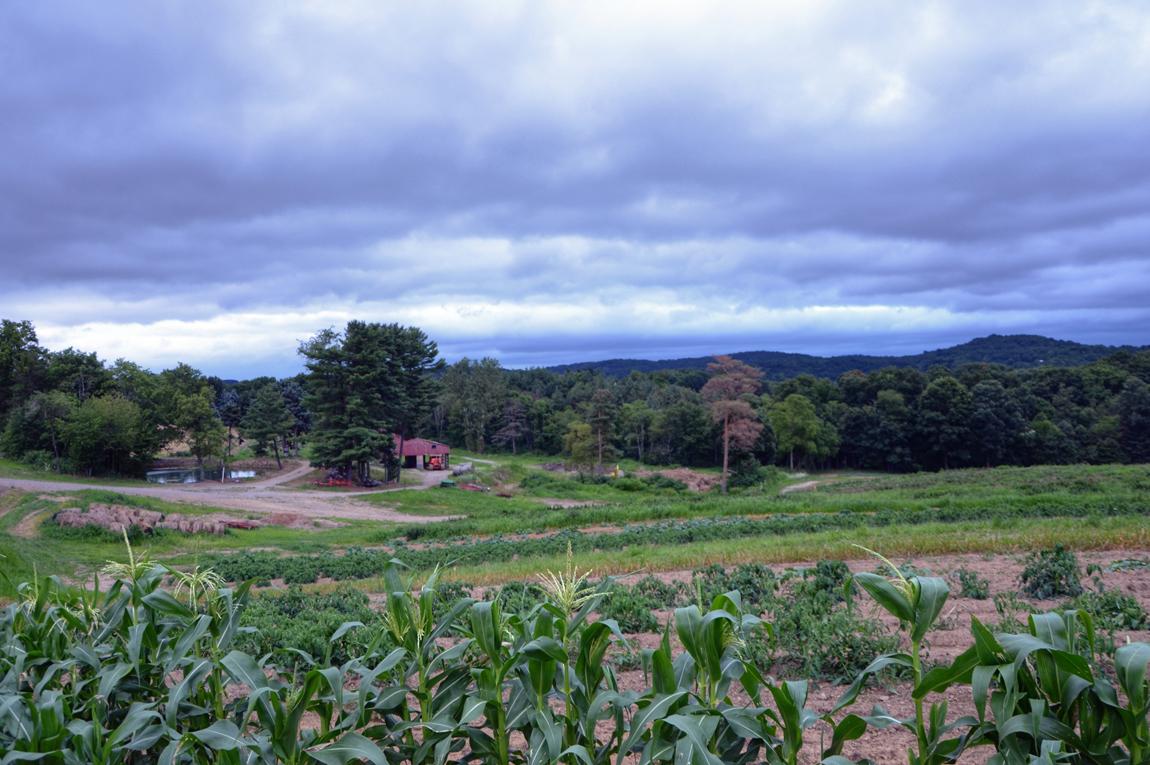 FarmShot@CaryPhotoShoot