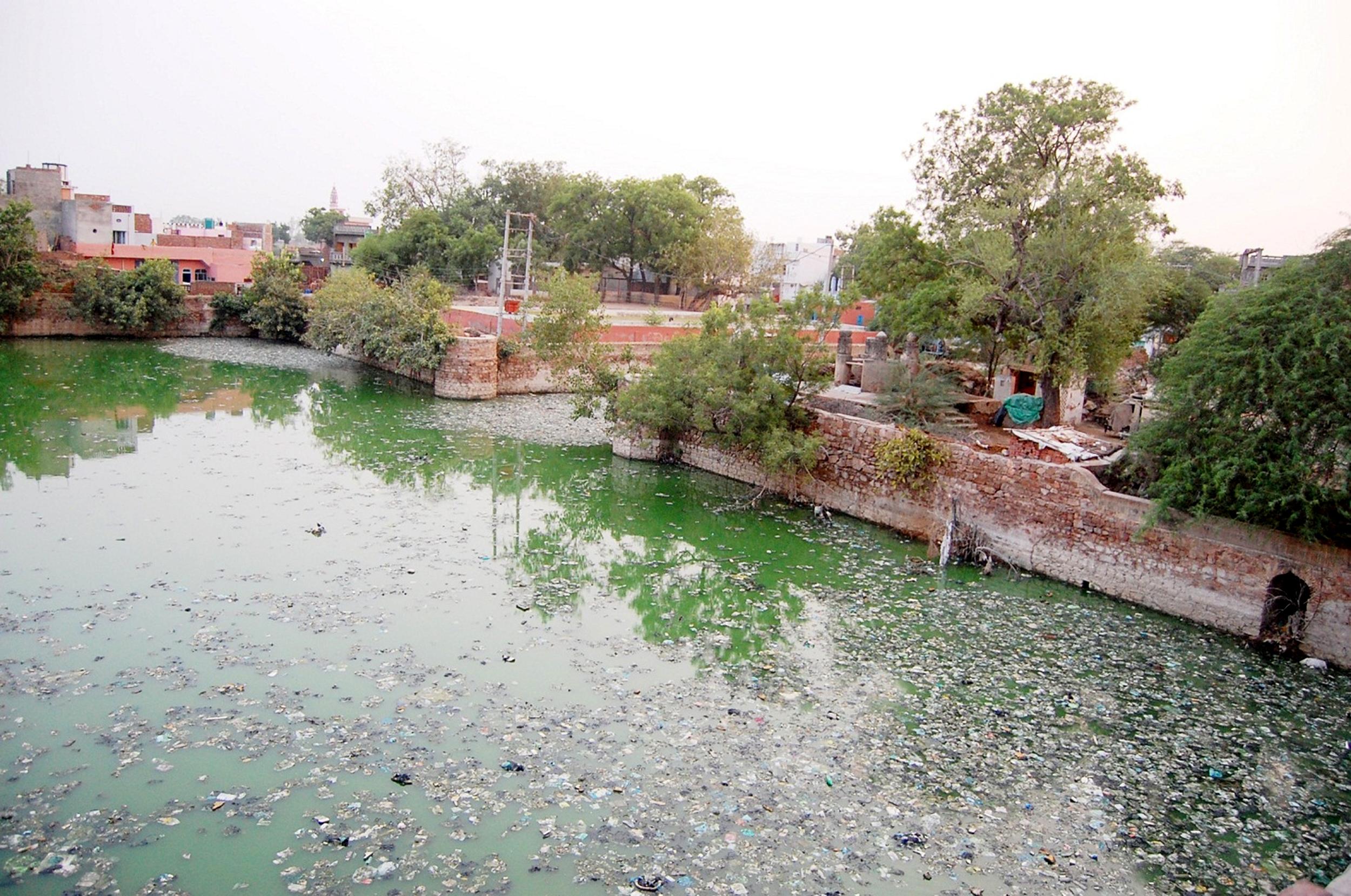 श्यामसर तालाब