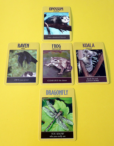 Power Animals Oracle ~ August 23