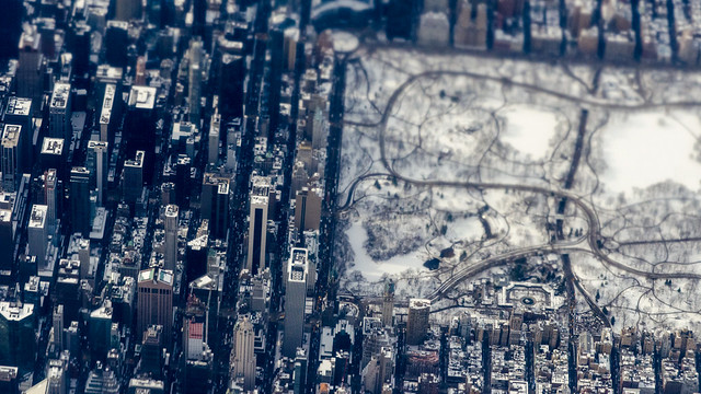 Winter in Central Park, from above, with macro lens (New York City)