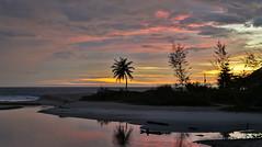 HDR Palms sunset.                XOKA2285s