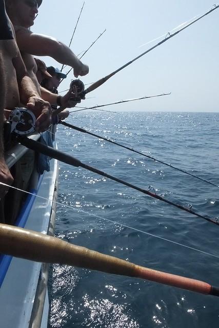 14887223255 9b389efb97 for Deep sea fishing corpus christi