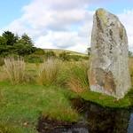 Standing Stones in Mynachlog Ddu