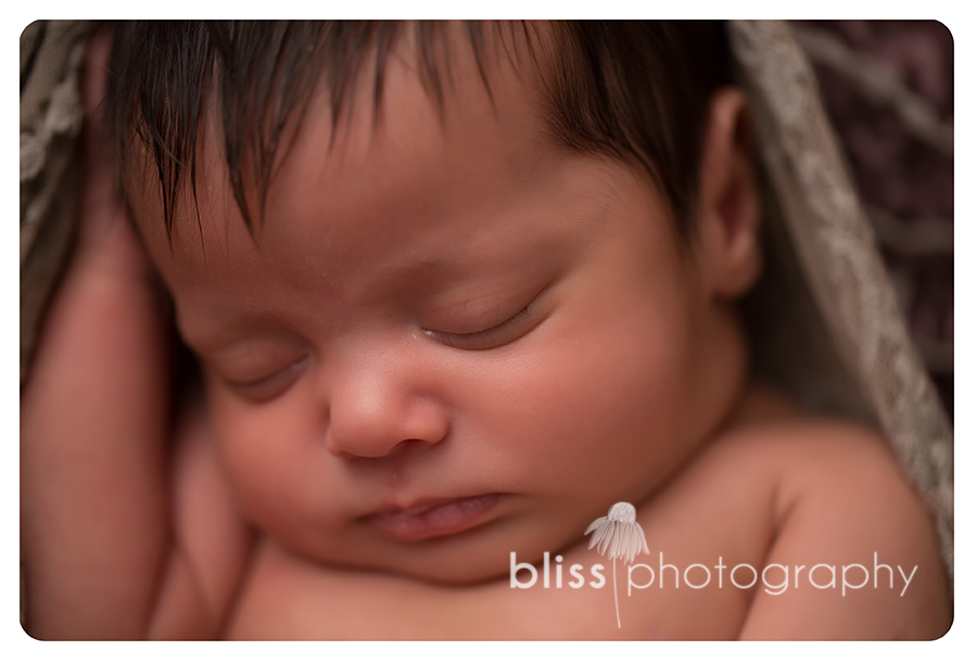 newborn bliss photography-4234