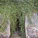 L'Helice Terrestre de L'Orbière ©stitchling