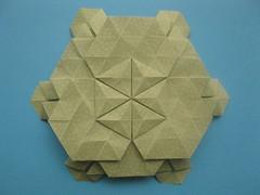 Eric Gjerde's Flowering Tessellation