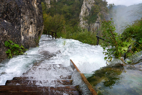 water nationalpark flooding rocks wasser path croatia fels weg steg 2014 kroatien überflutung plitvičkajezera plitwitzerseen nationalparkplitvicerseen dorenawm nex7 renatedodell