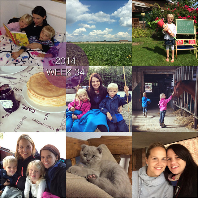 2014 in pictures: week 34